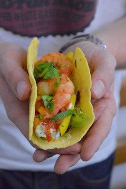 Mais-Tacos mit Shrimps und Avocado